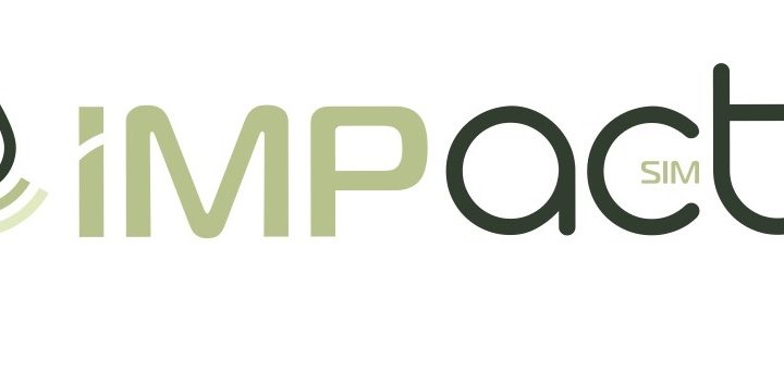 Alberto Bellora entra nel Consiglio di Amministrazione di IMPact SIM