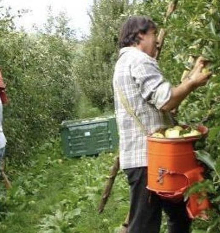 """""""L'agroalimentare non può fermarsi!"""": Openjobmetis avvia una campagna di reclutamento straordinaria in tutta Italia ricercando 1000 persone"""